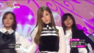 LUV (Show Music Core 20141213) - Apink
