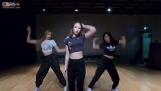 Ddu-Du Ddu-Du (Dance Practice) Moving Version) - BlackPink